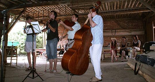 ... hudecká sestava Mladí Burčáci ...  v boršické stodole ... 2.8.2008 ... foto: Jiří Klement